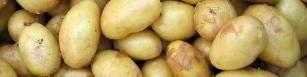 Kartoffeln sind ein sehr bekanntes Hausmittel