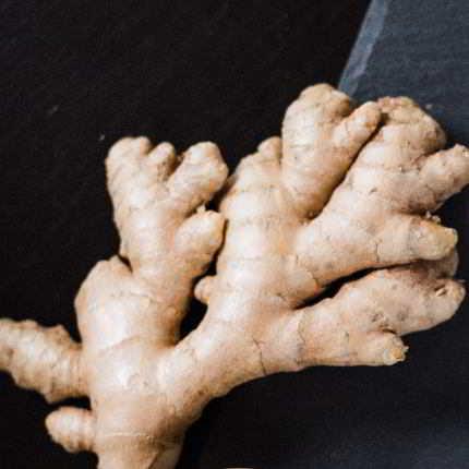 Knollen des Ingwer sind heutzutage in jedem Supermarkt zu finden.